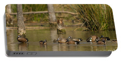 Blue-winged Teal Portable Battery Charger