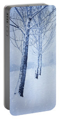 Blue Winter Path Portable Battery Charger