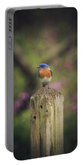 Portable Battery Charger featuring the photograph Blue With A Bit Of Pink by Robert L Jackson