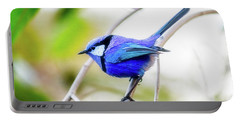 Blue Wren, Margaret River Portable Battery Charger