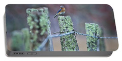 Portable Battery Charger featuring the photograph Bluebird 040517 by Douglas Stucky