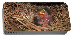 Portable Battery Charger featuring the photograph Bluebird Babies by Marie Hicks