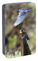 Bluebird Buzz Portable Battery Charger by Mike Dawson