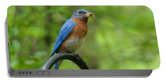 Bluebird Catches Worm Portable Battery Charger