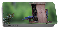 Bluebird Couple Sharing The Feeder Portable Battery Charger