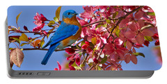 Bluebird In Apple Blossoms Portable Battery Charger by Marie Hicks