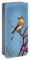 Bluebird In Spring Portable Battery Charger by Betty LaRue