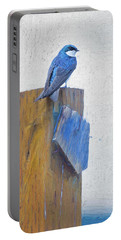 Portable Battery Charger featuring the photograph Bluebird by James BO Insogna