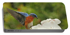 Bluebird Landing On Orchid Portable Battery Charger by Luana K Perez