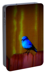 Portable Battery Charger featuring the photograph Bluebird Of Happiness by Karen Shackles