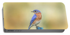 Portable Battery Charger featuring the photograph Bluebird On Blue Stick by Robert Frederick