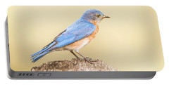 Portable Battery Charger featuring the photograph Bluebird On Fence Post by Robert Frederick