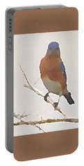 Bluebird Stare  Portable Battery Charger