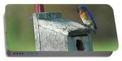 Portable Battery Charger featuring the photograph Bluebird by Steve Stuller