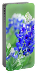 Bluebonnets 071616 Portable Battery Charger