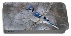Bluejay 1358 Portable Battery Charger by Michael Peychich