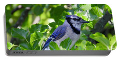 Bluejay Portable Battery Charger
