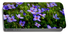 Portable Battery Charger featuring the photograph Bluets by Kathryn Meyer