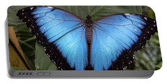 Blue Morph Portable Battery Charger