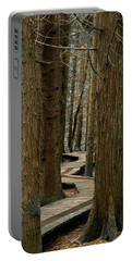 Boardwalk Among Trees Portable Battery Charger