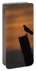Boat-tailed Grackle At Sunset Portable Battery Charger