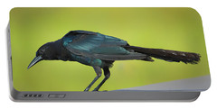Boat-tailed Grackle Male Portable Battery Charger