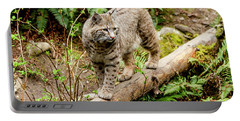 Bobcat In Forest Portable Battery Charger