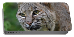 Bobcat In The Trees Portable Battery Charger