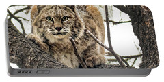 Bobcat In Winter Portable Battery Charger