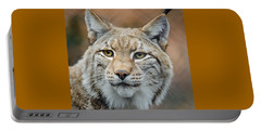 Bobcat - Lynx Rufus Portable Battery Charger