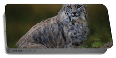 Bobcat On Alert Portable Battery Charger