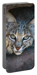 Bobcat Stare Portable Battery Charger by Elaine Malott