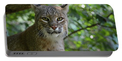 Bobcat Staring Contest Portable Battery Charger