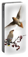 Portable Battery Charger featuring the photograph Bohemian Waxwings by Mircea Costina Photography