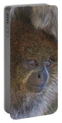 Bolivian Grey Titi Monkey Portable Battery Charger