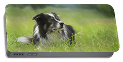Border Collie - Dwp2189332 Portable Battery Charger