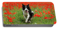 Border Collie In Poppy Field Portable Battery Charger