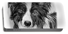Border Collie Stare Portable Battery Charger