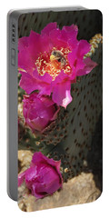 Borrego Springs Bloom 6 Portable Battery Charger