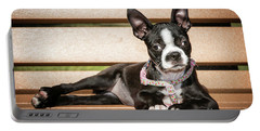 Boston Terrier Puppy Relaxing Portable Battery Charger by Stephanie Hayes