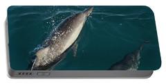 Bottle Nose Dolphin Portable Battery Charger