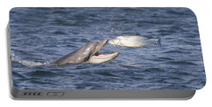Bottlenose Dolphin Eating Salmon - Scotland  #36 Portable Battery Charger