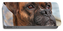 Portable Battery Charger featuring the photograph Boxer Portrait by Debbie Stahre