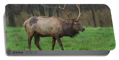 Boxley Elk Portable Battery Charger