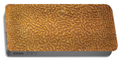 Brain Coral 47 Portable Battery Charger by Michael Fryd