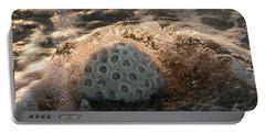 Brain Coral Splash Delray Beach Florida Portable Battery Charger