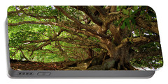 Branches And Roots Portable Battery Charger by James Eddy