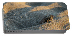 Brave Beginnings Sea Turtle Hatchling Delray Beach Florida Portable Battery Charger