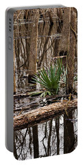 Brazos Bend Swamp In Winter Portable Battery Charger
