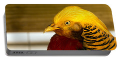 Bright Bird Portable Battery Charger